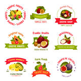 Vector exotic fruits icons for market or shop Royalty Free Stock Image