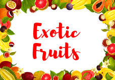 Vector exotic tropical fruits poster for market Royalty Free Stock Photo