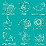 Vector Exotisch fruit op groene achtergrond Stock Afbeelding
