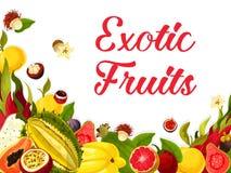 Vector exotische verse tropische vruchten affiche Stock Fotografie