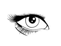 Vector Eye. Beautiful female eye. Vector illustration EPS8 Stock Photography
