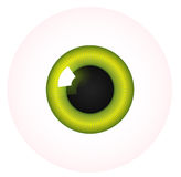 Vector eye Royalty Free Stock Photo