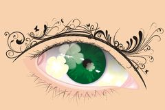 Vector eye with floral eyebrow. The art of eye with yellow flower shadow inside and floral motif in eyebrow, vector illustration Stock Image
