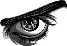 A vector of a eye men on white background. A vector of a eye man royalty free illustration