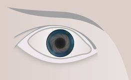 Vector eye with a pupil photo lens Royalty Free Stock Photo