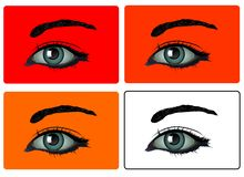 Vector - Eyes. 4 colors of eyes royalty free illustration