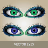 Vector eyes set eps10. Vector eyes set blue and green eps10 Stock Illustration