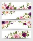 Vector Fahnen mit bunten Rosen, lisianthus und Anemonenblumen Lizenzfreies Stockbild