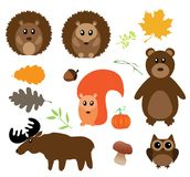 Vector Fall Animals Stock Photography