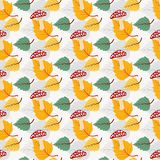 Vector fall pattern Royalty Free Stock Images