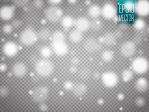 Vector falling snow effect isolated on transparent background with blurred bokeh. Vector illustration Stock Photography