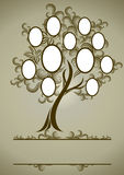 Vector family tree design with frames Stock Images