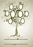 Vector family tree design with frames Stock Photography