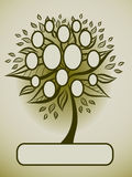Vector family tree design with frames Royalty Free Stock Photos