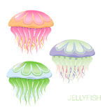 Vector fantastic jellyfish Royalty Free Stock Images