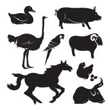 Vector farm animal set Stock Images