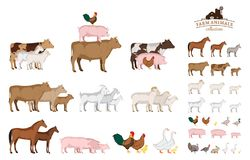 Vector farm animals collection isolated on white. Vector farm animals isolated on white. Livestock and poultry icons for farms, groceries, packaging and branding Royalty Free Stock Image