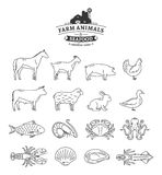 Vector Farm Animals and Seafood Thin Line Icons Collection. Vector farm animals and seafood thin line icons isolated on white. Livestock, poultry and seafood Stock Image