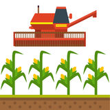 Vector farm harvesting equipment for agriculture and horticulture healthy natural fruits and hand tools Royalty Free Stock Images