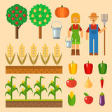 Vector farm harvesting equipment for agriculture and horticulture healthy natural fruits and hand tools Stock Photo