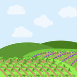 Vector Farm Themed Background. Or Landscape Stock Image