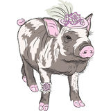 Vector fashion funny piggy in beautiful hat wit flowers and gart Stock Photos
