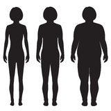 vector fat body, weight loss, Royalty Free Stock Images