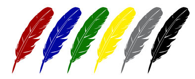 Vector feather. Stock Image