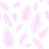 Vector feather background Royalty Free Stock Photos
