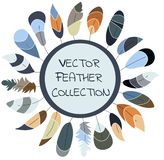 Vector feather collection,set. Scandinavian design. Soft colors. stock illustration