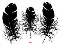 Vector feather silhouette Royalty Free Stock Photo