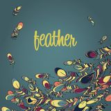 Vector feathers background card Royalty Free Stock Images