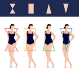 Vector Female Body Types Illustration. Female Body Types: hourglass, rectangle and triangles. Vector editable illustration for beauty projects Stock Photos