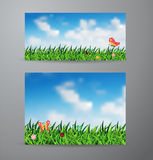 Vector field of green grass and sky background. Vector brochure business banner design template, With field of green grass and sky background Stock Photography