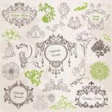 Vector fijado: Elementos del diseño y decoración caligráficos de la paginación Imagen de archivo