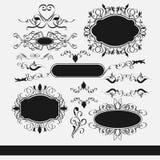 Vector fijado: elementos y página caligráficos del diseño  Foto de archivo libre de regalías