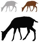 Doe or deer silhouette - hoofed ruminant mammal. Vector file of doe or deer silhouette - hoofed ruminant mammal royalty free illustration