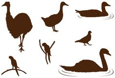 Various wildlife, zoo birds silhouette. Vector file of various wildlife, zoo birds silhouette Royalty Free Stock Photography