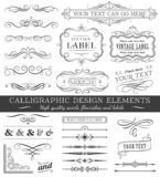 Vector Filigree Flourishes Design Set vector illustration