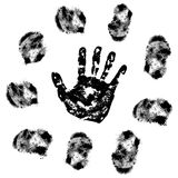 Vector fingerprint Royalty Free Stock Photo