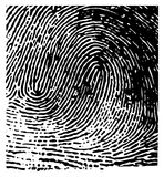 Vector fingerprint. Black and white Royalty Free Stock Images