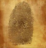Vector fingerprint Royalty Free Stock Photos
