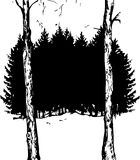 Vector fir forest. And deciduous tree trunks, black silhouette of fir trees, hand drawn vector illustration Royalty Free Stock Image