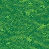 Vector. Fir-Tree Seamless Pattern. Fir Tree Seamless Green Pattern Royalty Free Stock Images