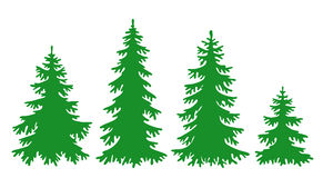 Vector fir-trees. Silhouettes of fir-trees in vector format (eps8 Royalty Free Stock Photos