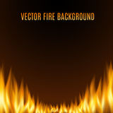 Vector fire or flame background.  Stock Image