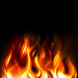 Vector Fire. Illustration of vividly burning fire on a black background Stock Image