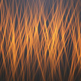 Vector Fire. Motion Graphics Fire Flow Template Stock Photography