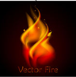 Vector fire realistic 3d illustration. N  black background Stock Image