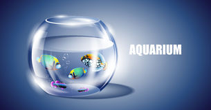 Vector Fish In Aquarium Royalty Free Stock Image